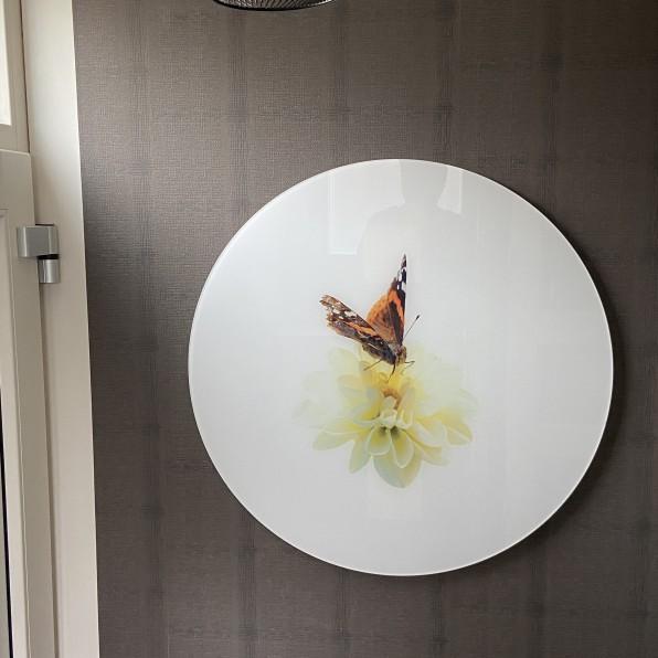 Muurcirkel plexiglas met vlinder