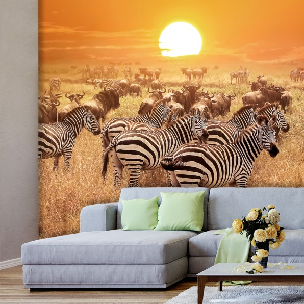 Behang met zebra's in Afrika