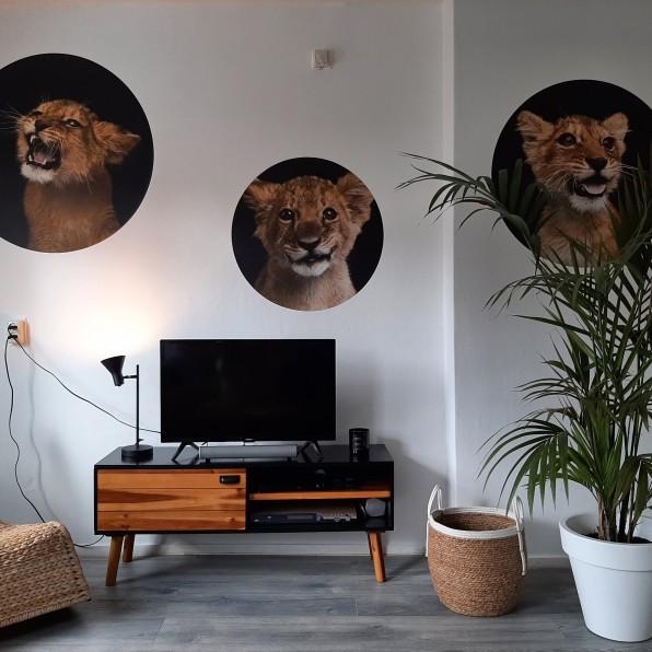 Behangcirkels tijgers