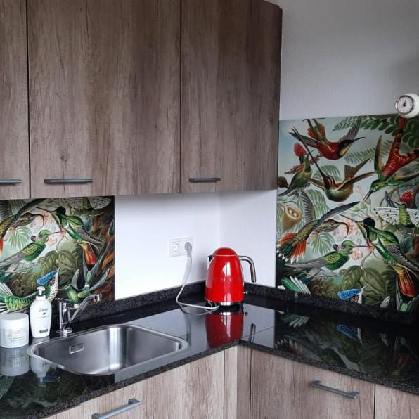 Keuken spatwand Hummingbirds