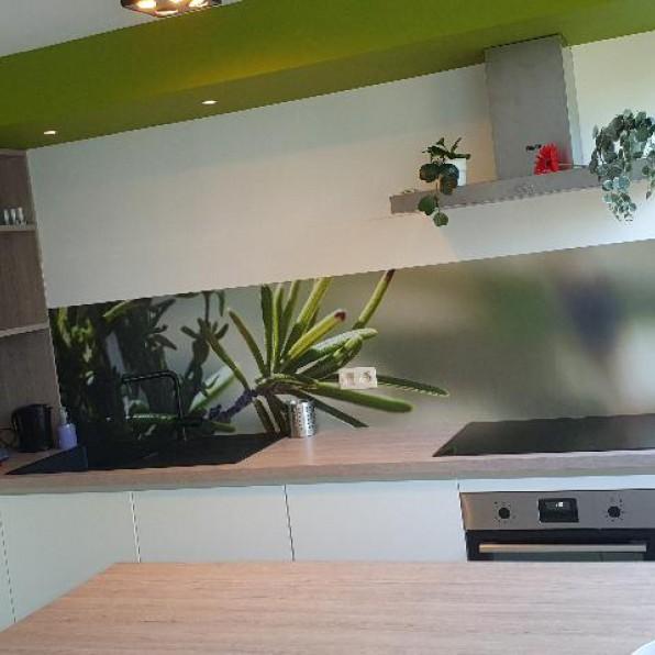 Keuken spatwand met tak