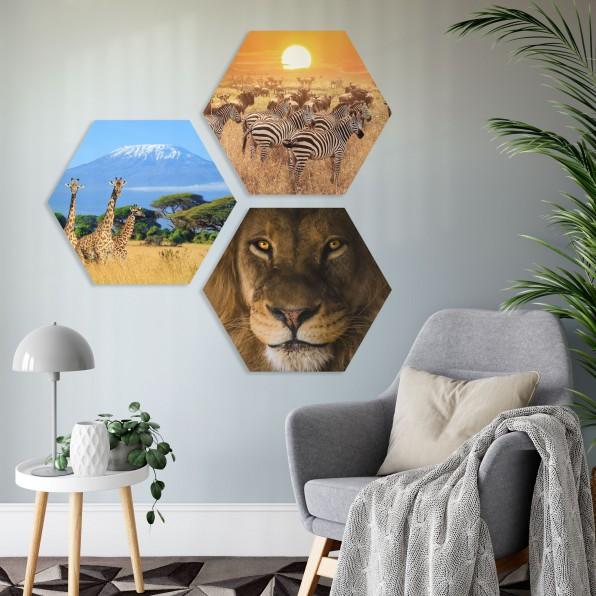 Vormen met Afrikaanse dieren