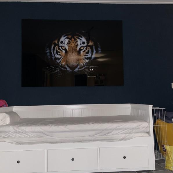 Plexiglas met indrukwekkende foto van een tijger