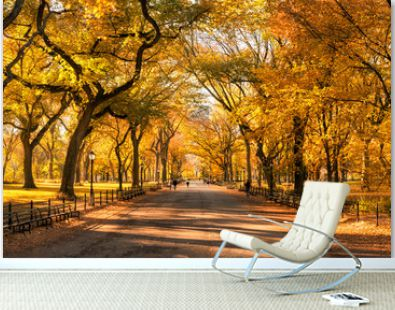 Colorful Central Park in New York City during autumn season
