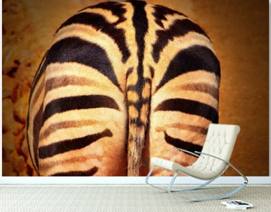 Wild african animals. Closeup of african bush zebras rear with part of the tail.