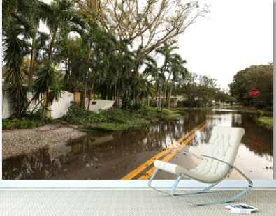 Flooded streets of a residential neighborhood in Fort Lauderdale, Florida, as seen on the morning after Hurricane Irma comes through the city.
