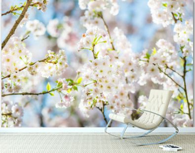 Beautiful nature scene with blooming cherry tree in spring