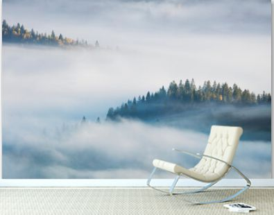 Concept foggy misty landscape with fir forest and yellow maple trees, aerial view