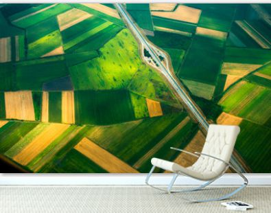 aerial photo from a plane, top view, road through the fields