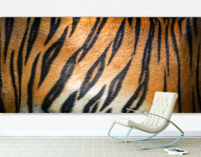Tiger pattern background / real texture tiger black orange stripe pattern bengal tiger