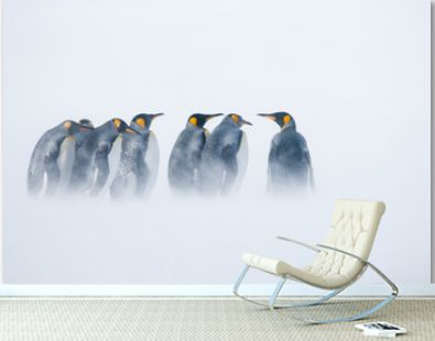 King penguins standing in blowing snow on the Sub-Antarctic island of South Georgia