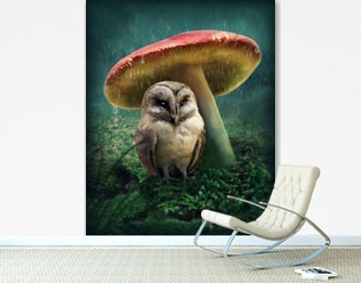 Little owl under mushroom
