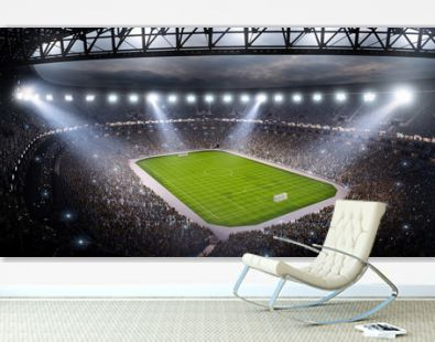 Professional soccer arena in 3D. Dramatic soccer stadium are full of fans. View from above.