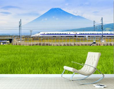 Bullet Train and Fuji Mountain with Rice Field Foreground