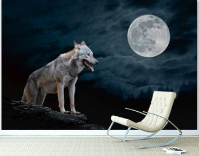 Wolf in the background of the moon