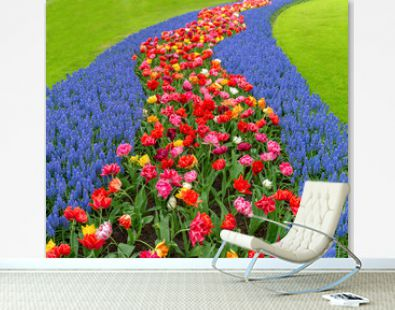 Field of colorful flowers.