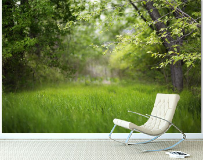 Beautiful green summer forest. Spring background, backdrop