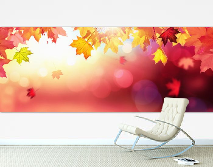 Falling Autumn Maple Leaves Natural Colorful Background