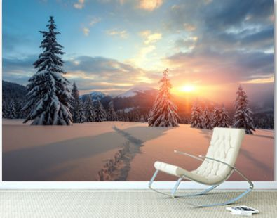 Fantastic orange winter landscape in snowy mountains glowing by sunlight. Dramatic wintry scene with snowy trees. Christmas holiday concept. Carpathians mountain, Ukraine, Europe