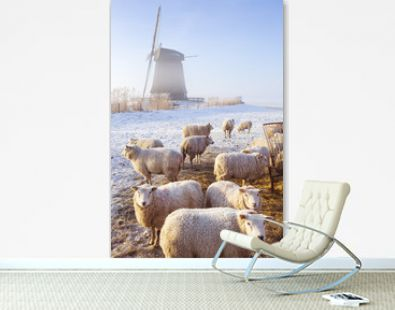 Sheep in front of Dutch windmill on a winter's morning