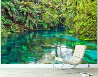 The Blue Spring at Te Waihou in the Waikato Region, New Zealand. Crystal clear water surrounded by native forest
