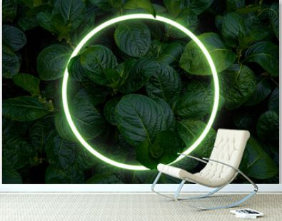 Beautiful and fresh green leaves with circle neon light