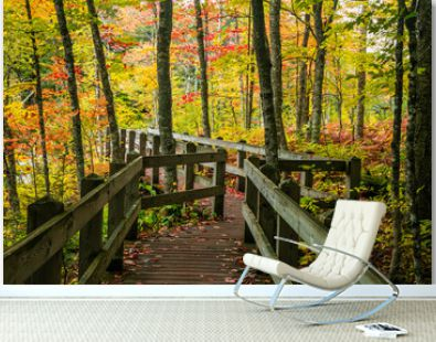 Scenic board walk in Presque Isle state park surrounded by fall foliage in Michigan upper peninsula