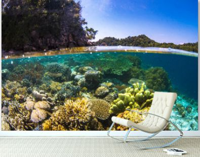 A beautiful coral reef with blue skies and vibrant colors travel