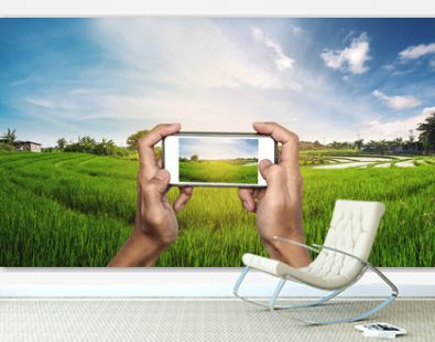 Smart phone in hand with rice field panorama in sunset, taking photograph, saving memories when traveling