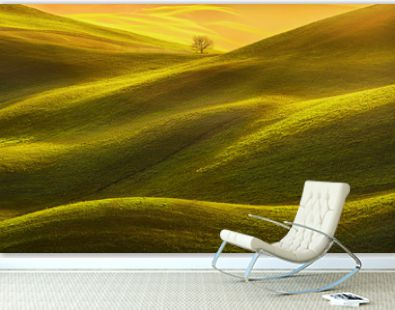 Tuscany panorama, rolling hills, fields, meadow and lonely tree. Italy