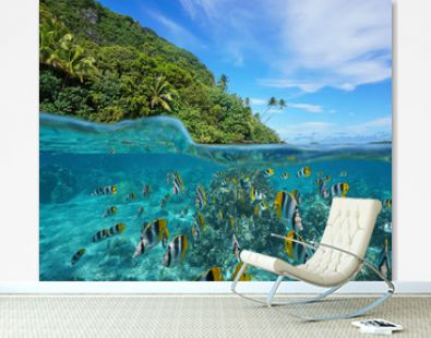 Over and under the sea near the shore of a lush wild coast with a school of tropical fish underwater split by waterline, Huahine island, Pacific ocean, French Polynesia