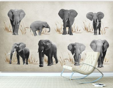 Elephants Wallpaper for walls. 3D rendering.