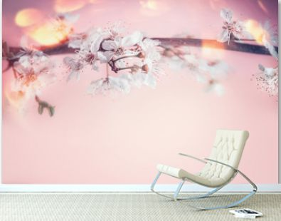 Beautiful spring background with close up of white cherry blossom at pastel pink background with bokeh
