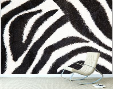 zebra background black and white texture for your design