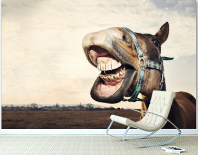 Funny portrait of smiling horse with teeth with copy space