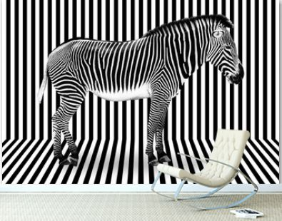 Surreal zebra on black and white striped background