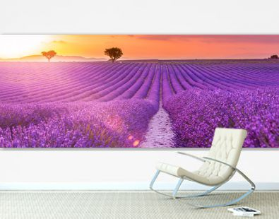 Stunning landscape with lavender field at sunset. Blooming violet fragrant lavender flowers with sun rays with warm sunset sky.