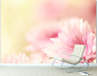 Beautiful soft pink flowers with a blurred yellow background with plenty of room for text.