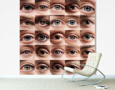 collage with human beautiful eyes of different colors