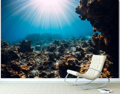 Underwater scene with corals, rocks and sun rays. Tropical ocean and reef