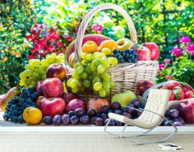 Variety of fresh ripe fruits in the garden.