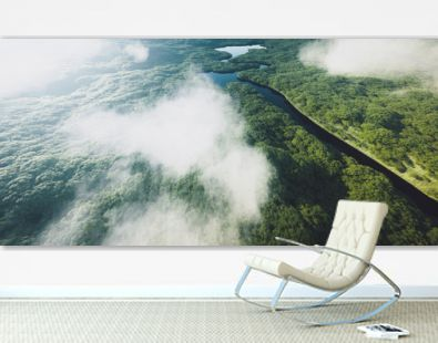 Aerial view of a dense amazonian rainforest with river. 3d rendering.