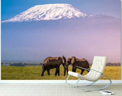 Two Elephant with Mount Kilimanjaro in the background