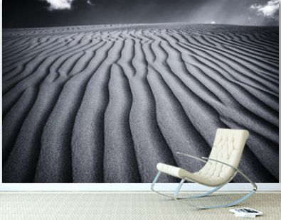 Wide Tranquil Empty Desert in Monochrome Color