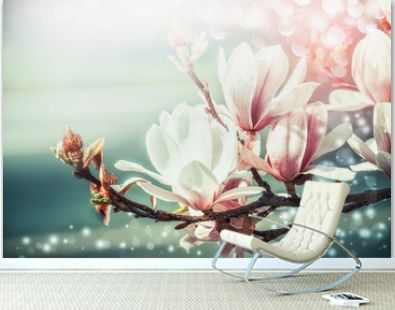 Amazing magnolia blossom with bokeh light, springtime nature background, floral border, front view, outdoor nature in garden or park. Floral border