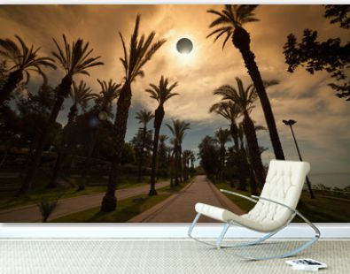 Total solar eclipse, palm avenue in resort city