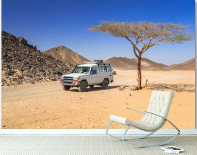 Off road trip to african desert of Egypt