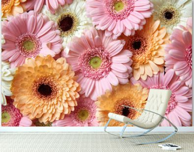 Bright floral background of gerberas, greeting card. Spring concept