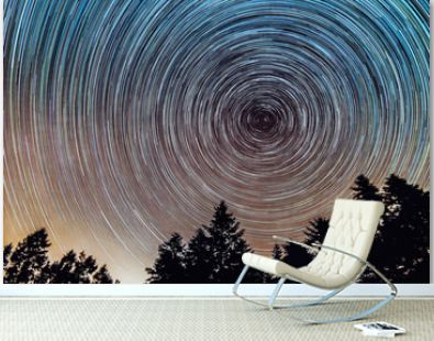 Star trails over the night sky, Time lapse of star trail, pine trees in the foreground, Avala, Belgrade, Serbia. The night sky is astronomically accurate.