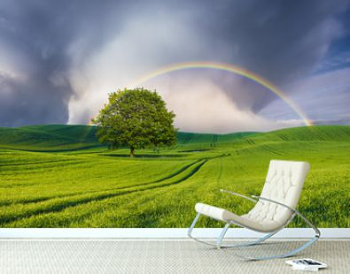 beautiful, double rainbow after passing a powerful downpour over a tree standing alone on a green field